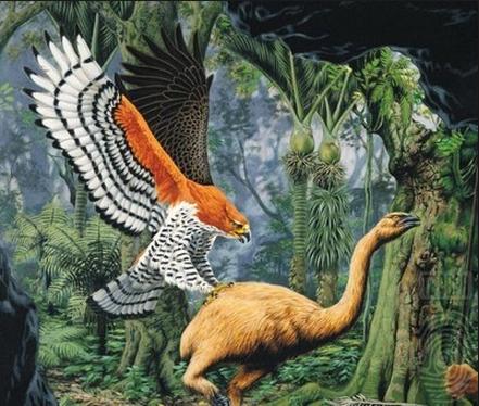 The Sky Bastard Who Ate My Ancestors in New Zealand