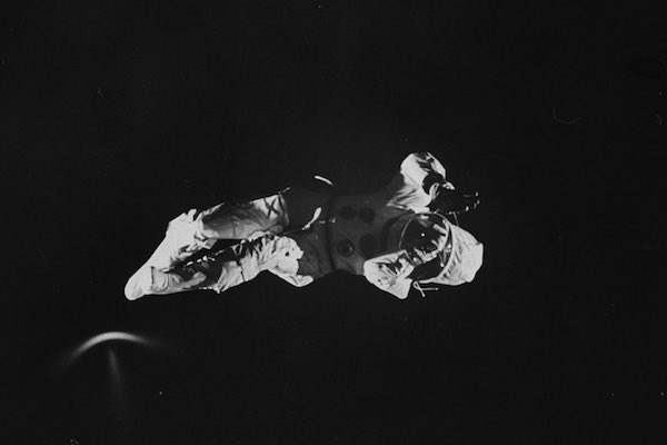 The Falling Cat Phenomenon: How NASA Trained Astronauts For Zero Gravity