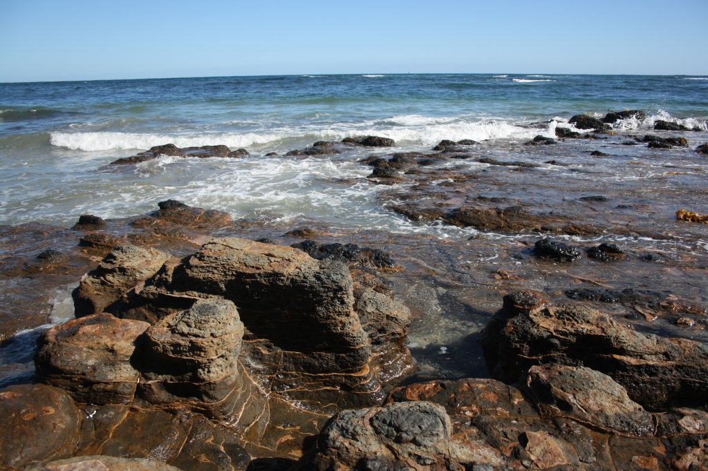 Secrets of the Mornington Peninsula: : Mushroom Reef Sanctuary, Flinders.