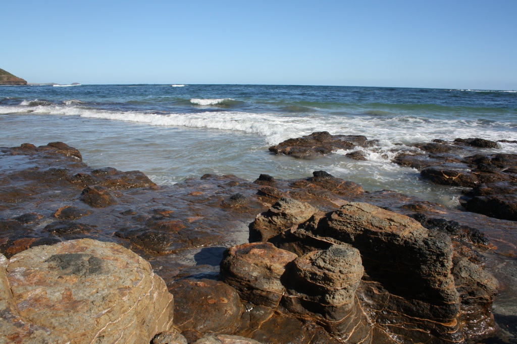 Summer in Melbourne Part 1: Mushroom Reef Sanctuary, Flinders.
