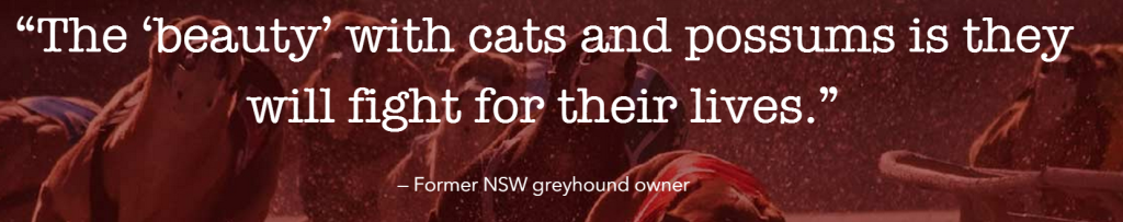 The Truth About Greyhounds Part 1: Greyhound Racing in Australia