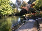 Christchurch in springtime is full of magic