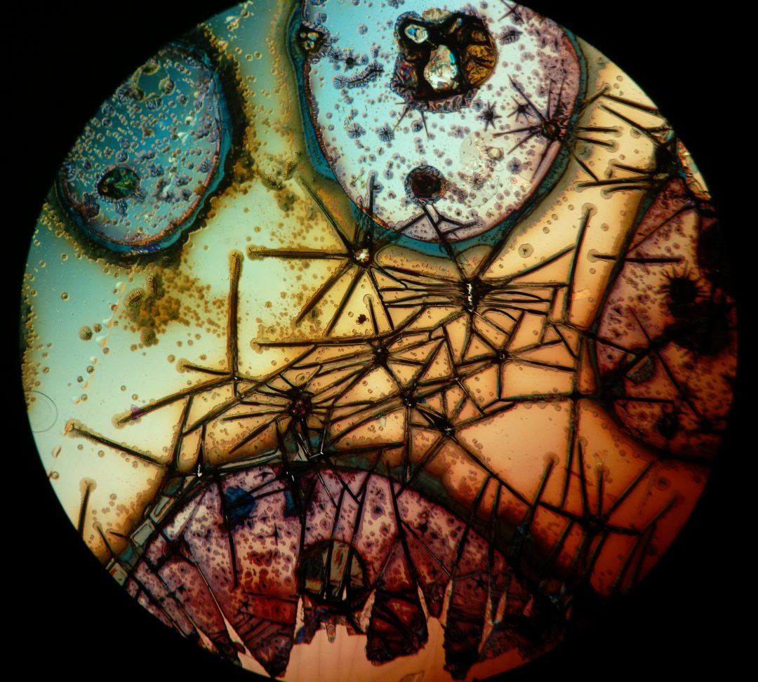 Oxidised metal films photographed using a microscope and an Amazon Fire phone by Reddit user Friz Face.