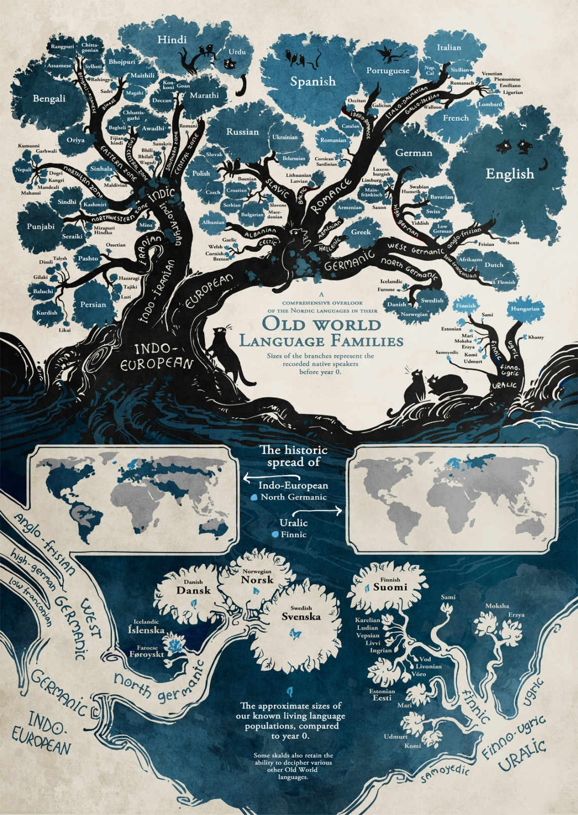 A history of the world's languages as a gnarly willow tree