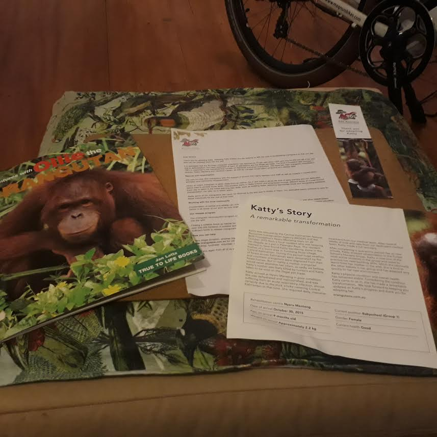 How you can help save the Orangutans of Borneo