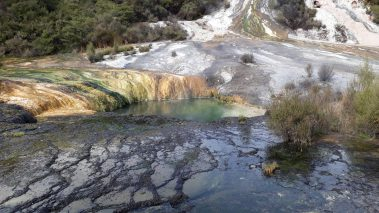 Welcome to the rumbling belly of the shaky isles: Orakei Korako https://wp.me/p41CQf-JXQ